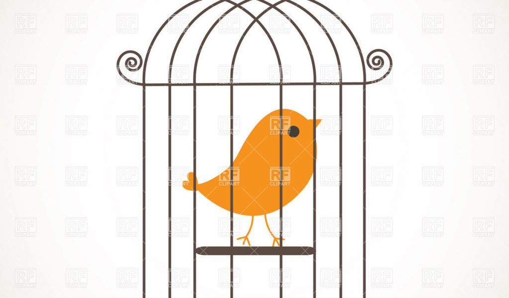 1024x600 Bird In Cage Drawing Cage Clipart Bird Cage