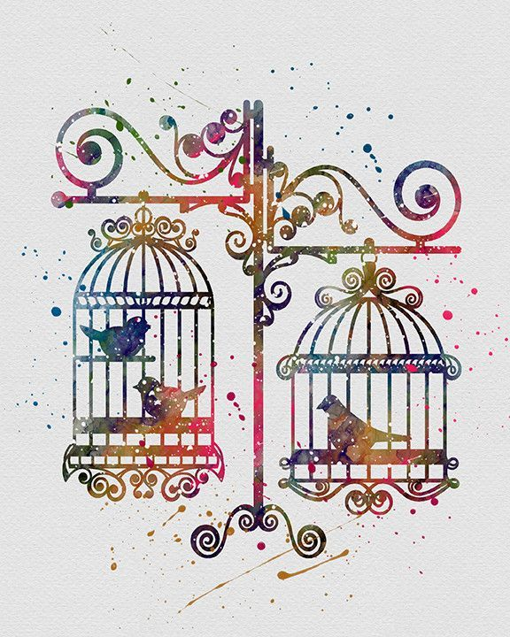 576x720 Birds In Cages 3 Bird, Illustrators And Watercolor