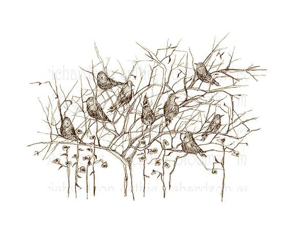 570x456 Bird Drawing Sepia Trees Pen And Ink Art Instant By Meadowblooms