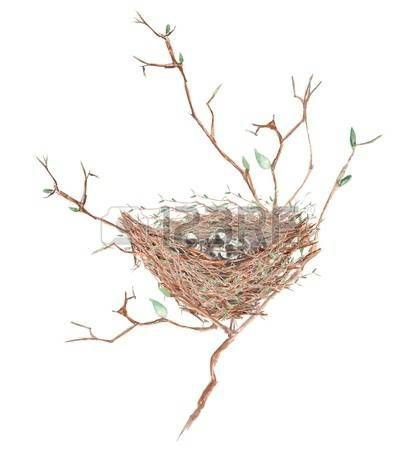 415x450 Image Result For Bird Nest In Tree Drawings Animals