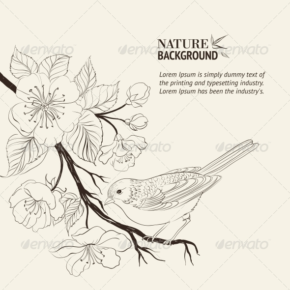 Drawings Of Birds On Branches