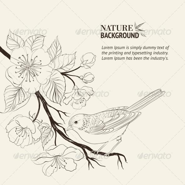 590x590 Hand Drawn Bird On Sacura Branch. By Kotkoa Graphicriver