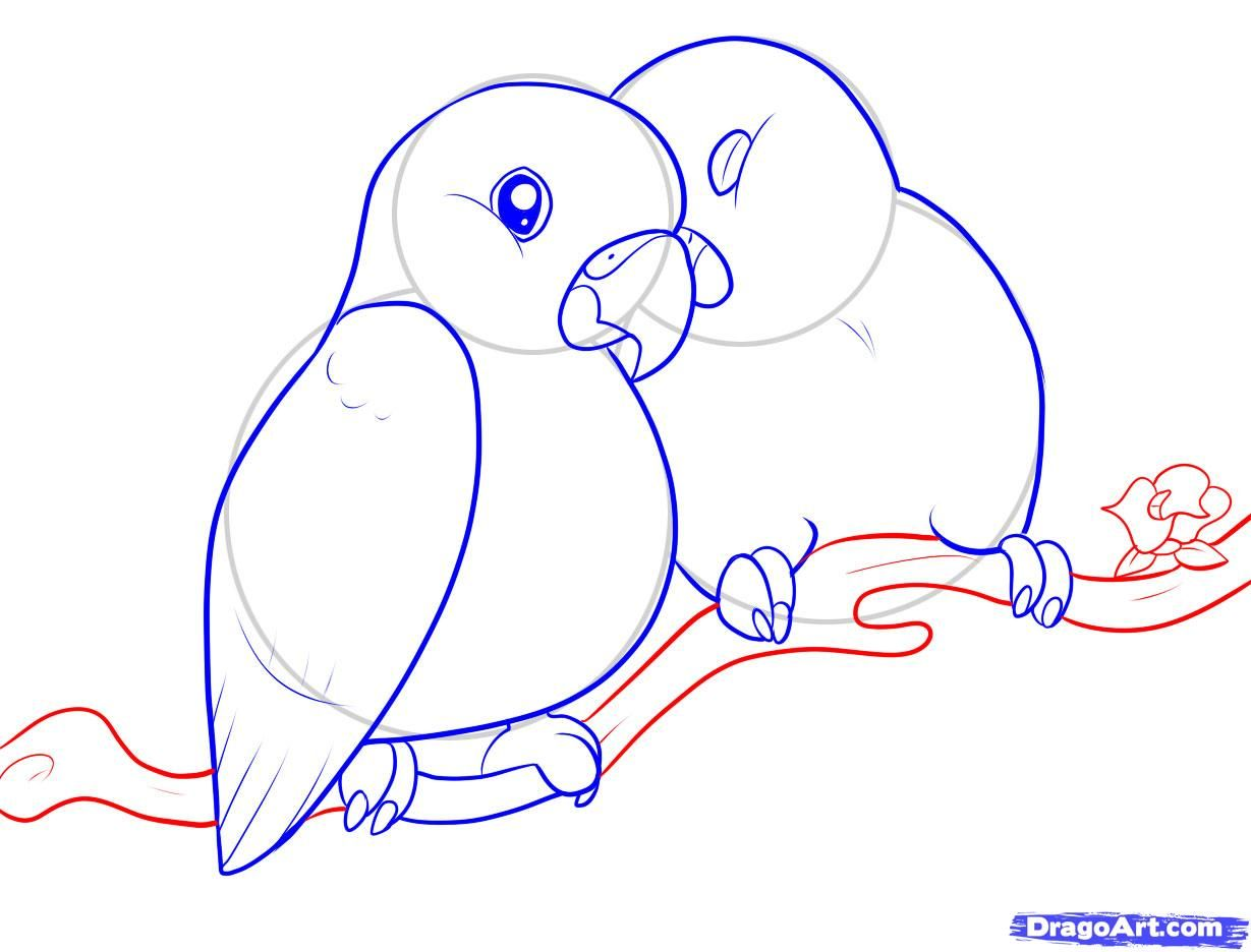 1229x936 Lovebirds Step By Step. Rajzok Bird And Drawings