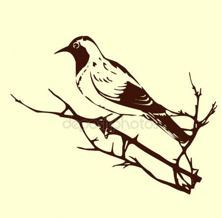 450x444 Vector Silhouette Of The Bird On Branch Tree Stock