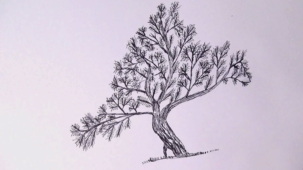 1280x720 Tree Bird Drawing With Pen Easy And Simple
