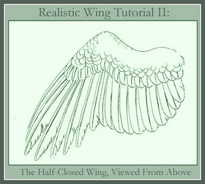300x269 Realistic Wing Tutorial Ii By Windfalcon