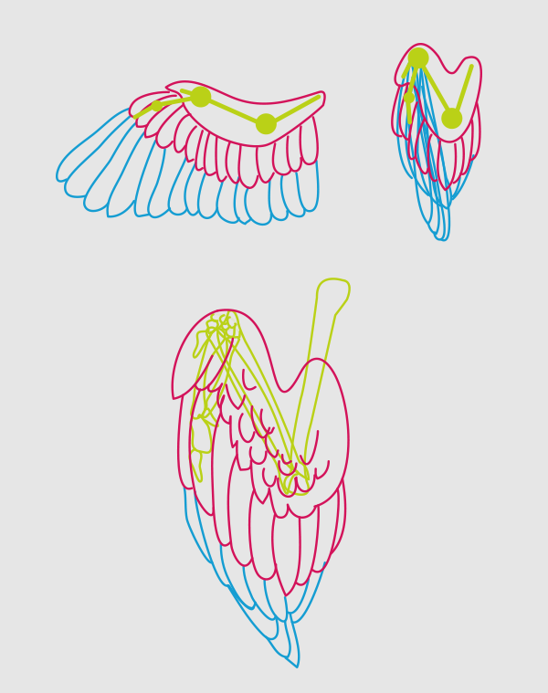 600x759 Taking Flight A Beginner's Guide Into Drawing Wings