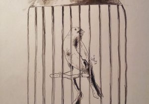 300x210 Bird In Cage Drawing Bird Cages Drawings Vintage Bird Cage Drawing