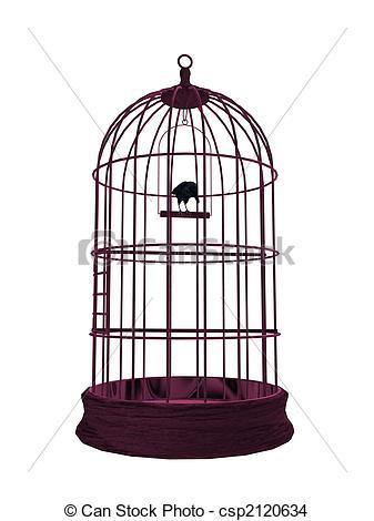 337x470 Birdcage Drawing