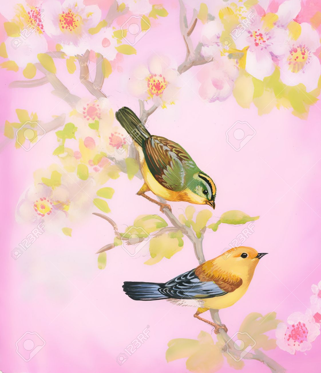 1122x1300 Drawing Of Beautiful Bright Birds And Flowers Stock Photo, Picture