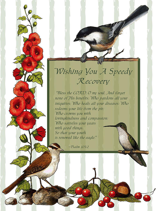674x900 Get Well Card With Birds And Flowers Drawing By Joyce Geleynse