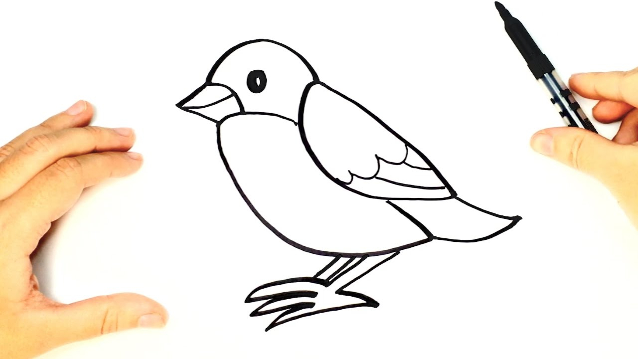 1280x720 Drawing Of Birds For Kids Flying Birds Drawing For Kids Easy