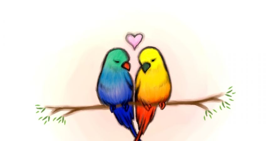 855x449 Love Bird Drawings In Color Wallpapers Gallery
