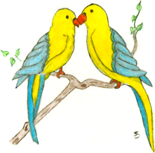 Birds Drawing For Colouring At Getdrawings Com Free For