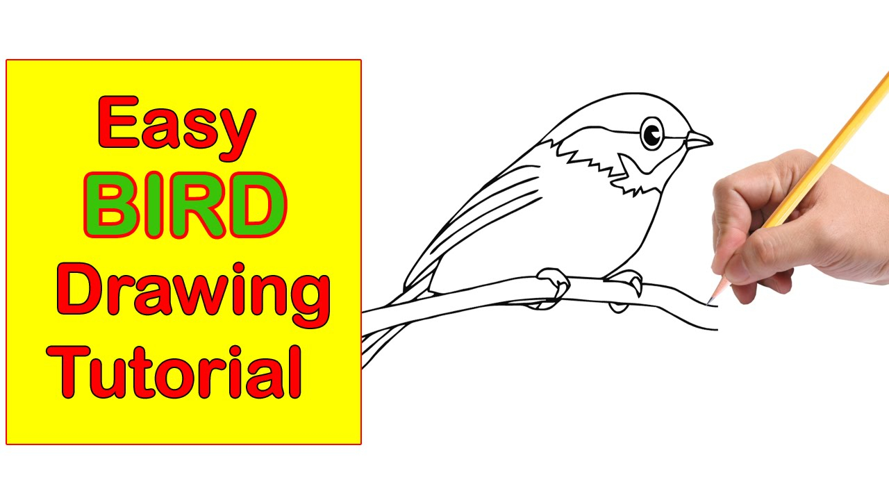 1280x720 Birds Drawing Step By Step Bird Drawing Stepstep Easy Tutorial