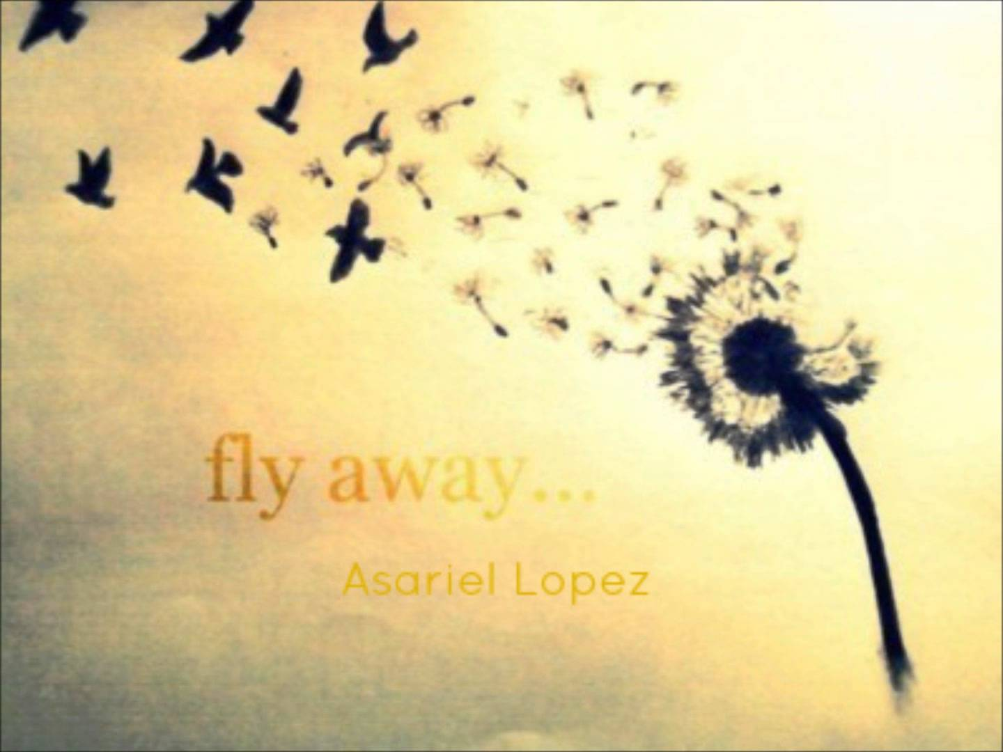 1440x1080 Fly Away (Acoustic Cover)