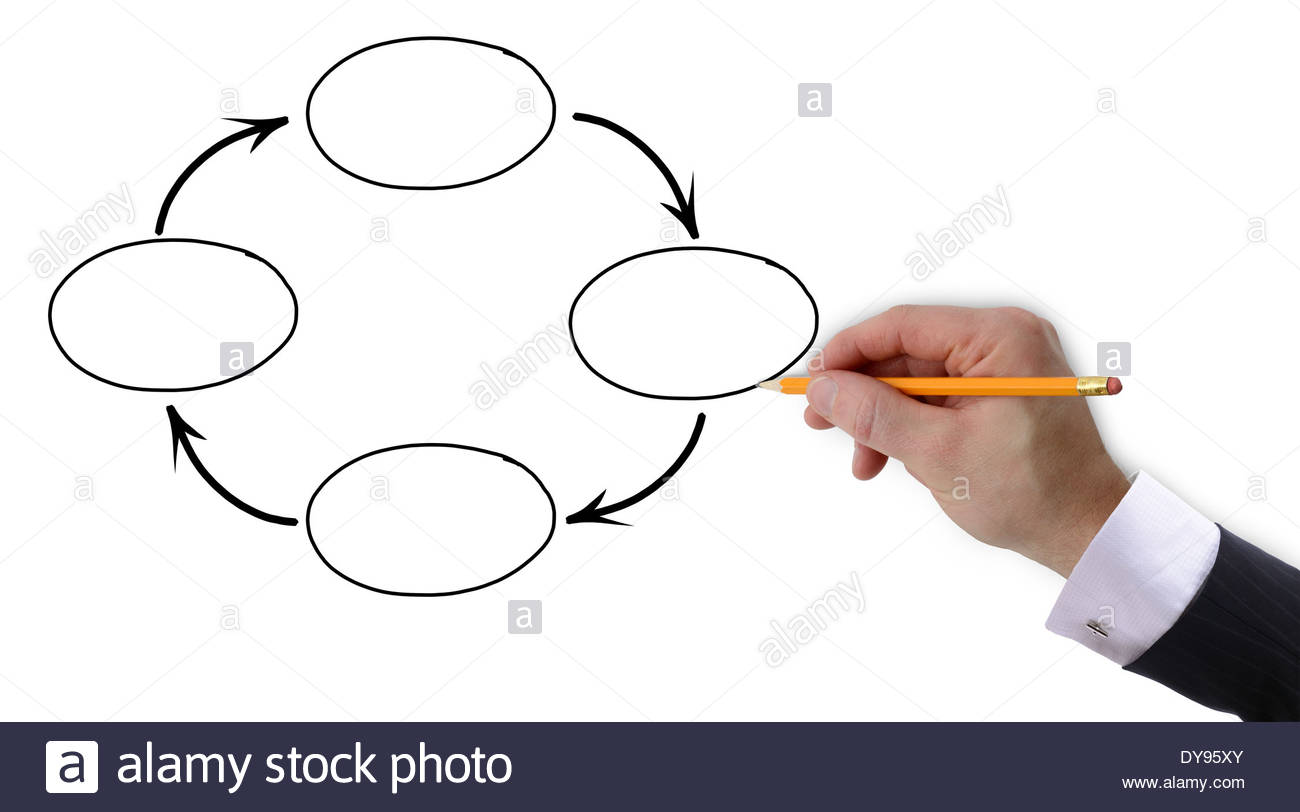 1300x812 Businessman's Hand Drawing Out A Presentation Of Blank Cycle Stock