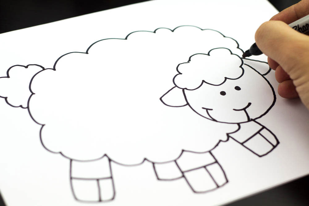 1000x667 How To Draw A Lamb
