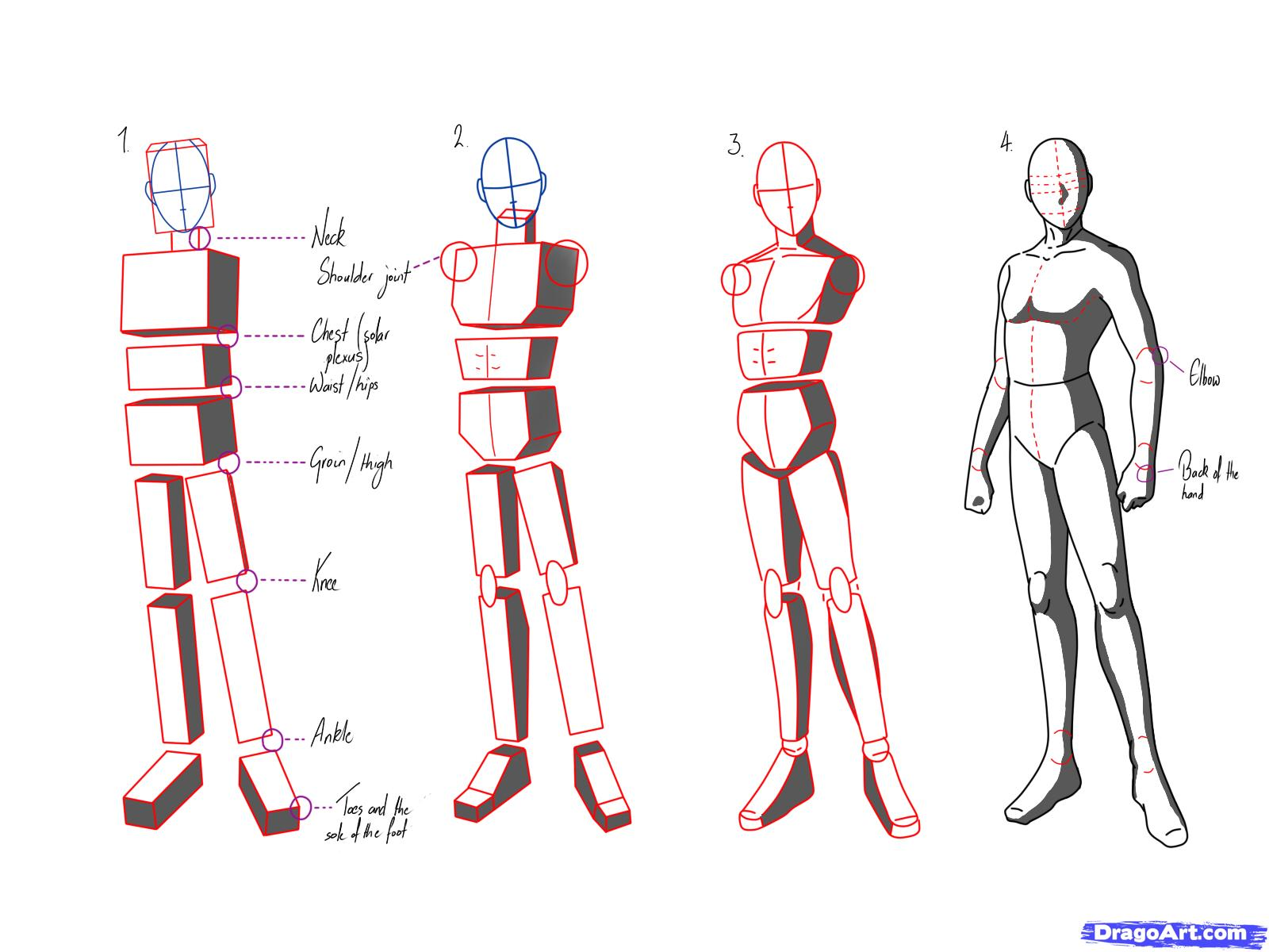1600x1200 How To Draw Anime Poses, Step By Step, Anatomy, People, Free