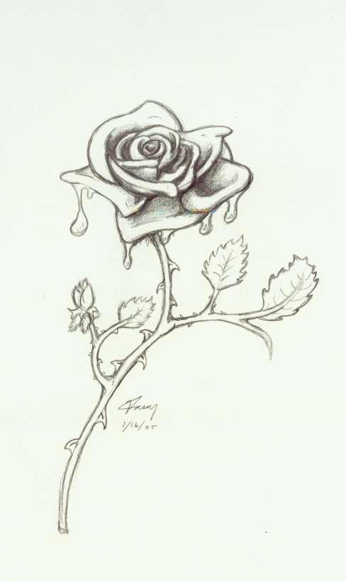 488x820 Bleeding Rose By 7dragondame7