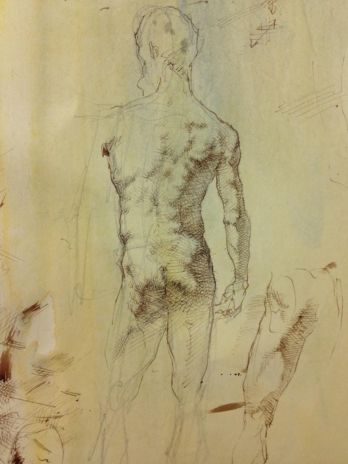 1200x1600 Marie Dauenheimer's Art And Anatomy Blog Drawing The Figure