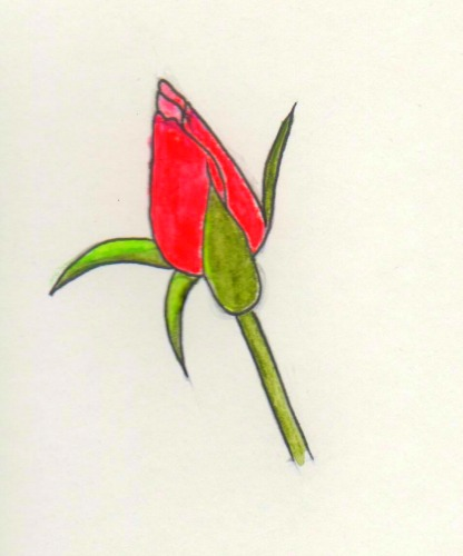 416x500 How To Draw A Rose
