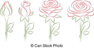 300x154 Vector Illustration Of A Blooming Roses. Eps10. Vector Clipart