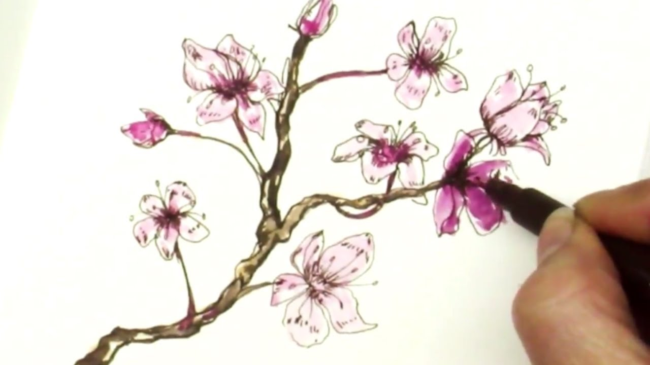 1280x720 Easy How To Draw A Sakura Cherry Blossom Branch