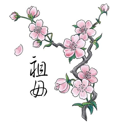 500x500 Peach Tree Blossom Sketch Tatoo