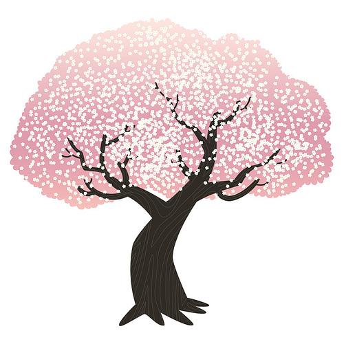 500x500 Cherry Blossom Tree Drawing Cherry Cherries