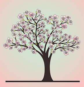 290x300 Cherry Blossom Tree Drawings Fine Art America