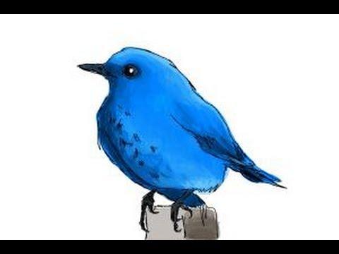 480x360 How To Draw A Bluebird