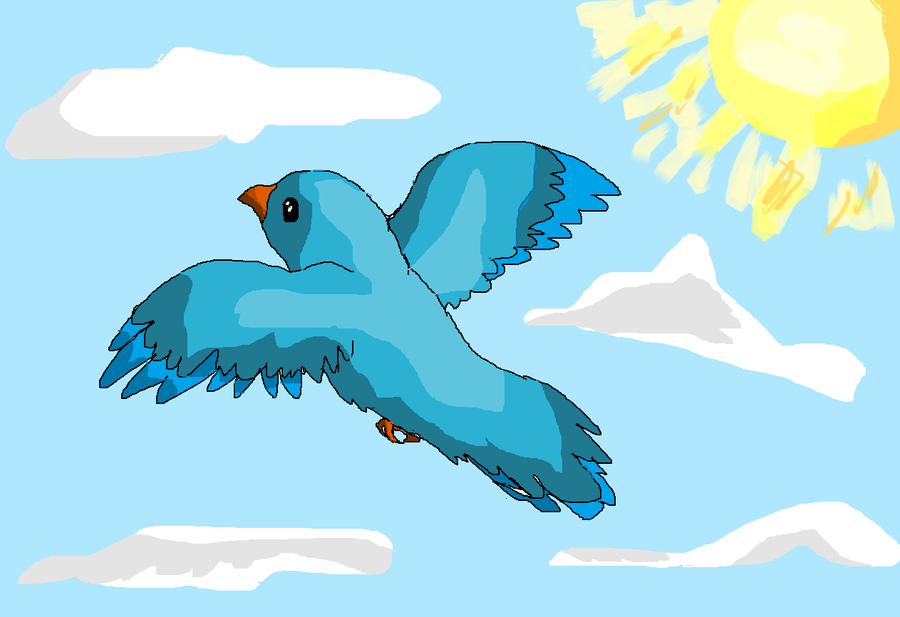 900x617 Blue Bird Flying By Wolfpack809