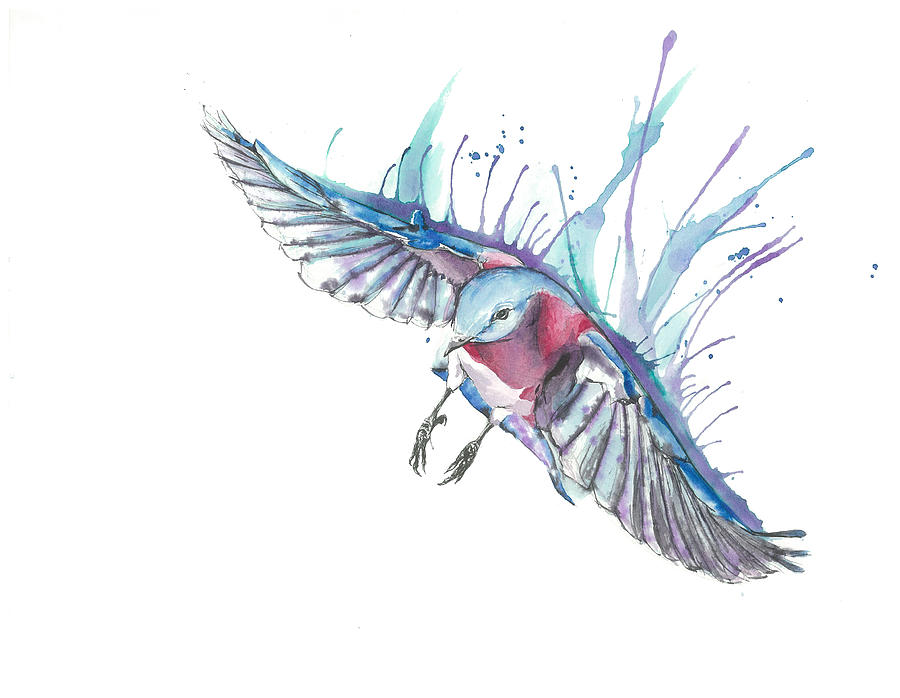 900x698 Bluebird In Flight Drawingpainting Ink And Watercolor Mixed Media
