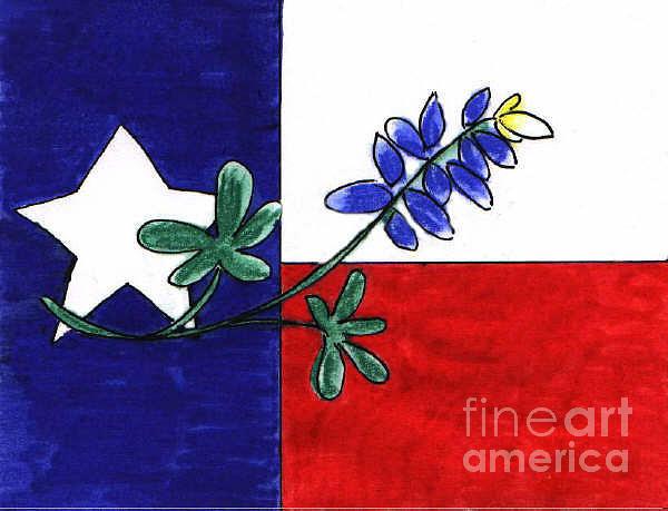 600x459 Texas Bluebonnet Drawing By Vonda Lawson Rosa