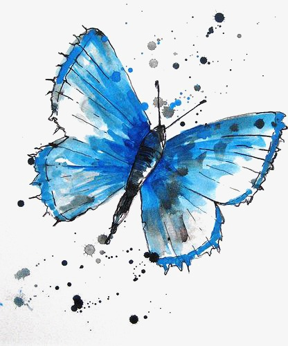 416x500 Drawing Butterfly, Creative Butterfly, Blue Butterfly, Small