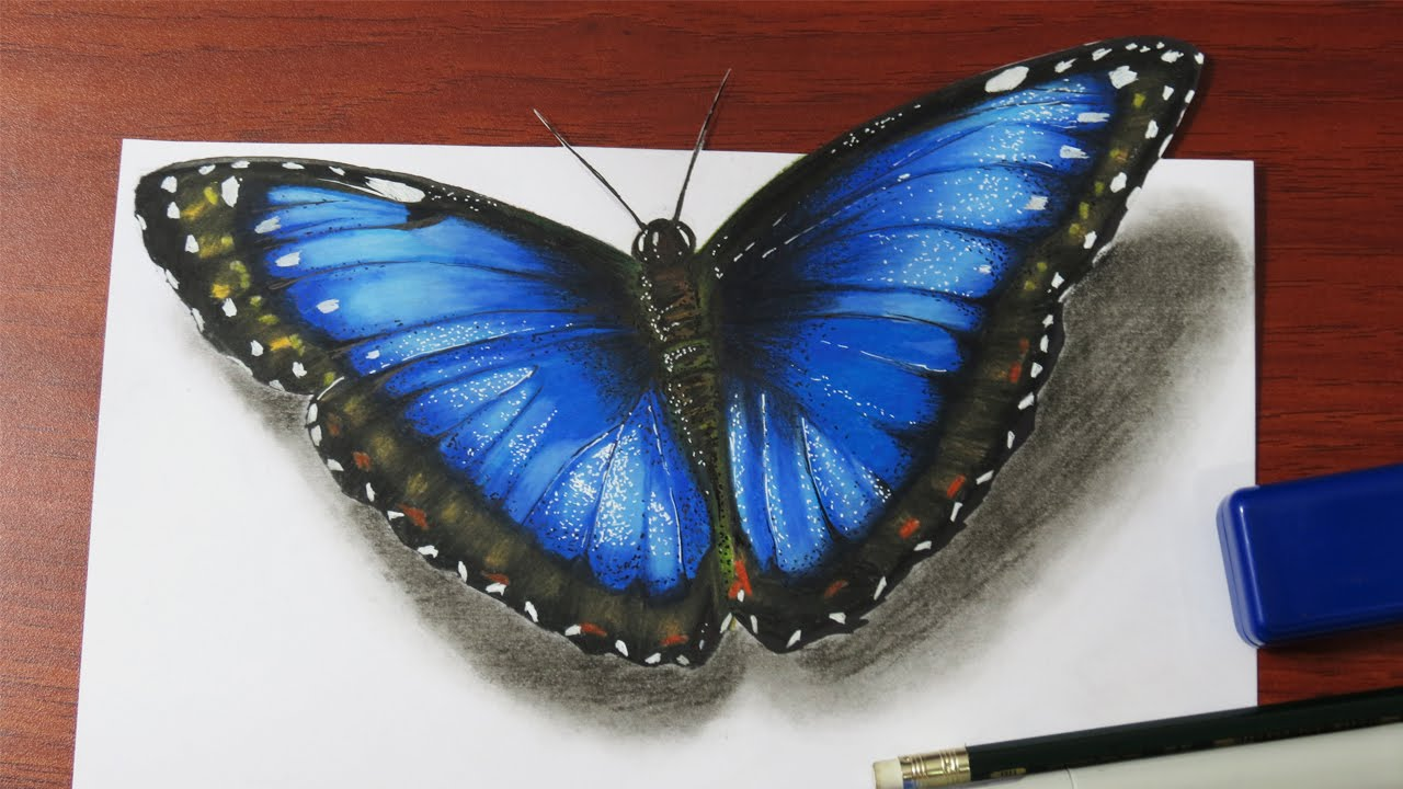 1280x720 How To Draw A Realistic Butterfly