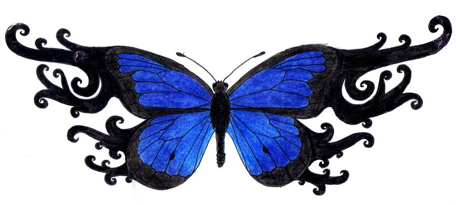900x405 Blue Butterfly Tattoo By 3mmmmma