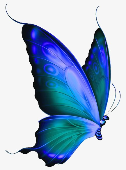 433x584 Butterfly, Hand Painted Butterfly, Drawing Butterfly, Blue