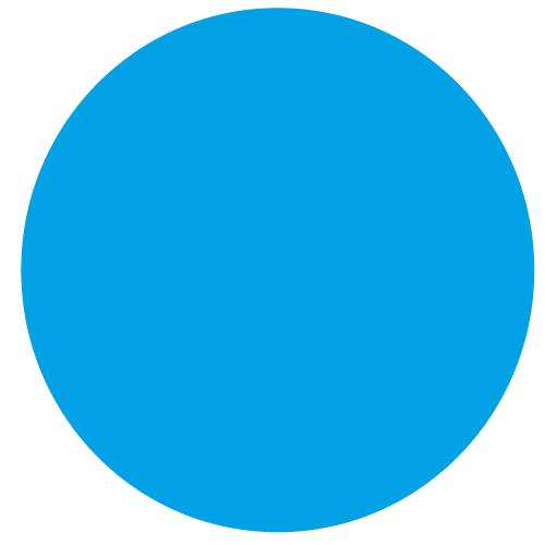 500x500 Label Blank Blue, Circle