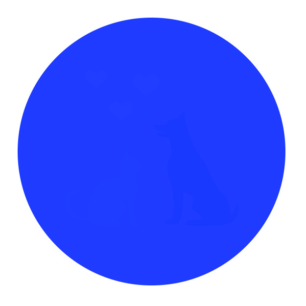 625x625 You'Ll Only Be Able To See Everything In This Circle If Your