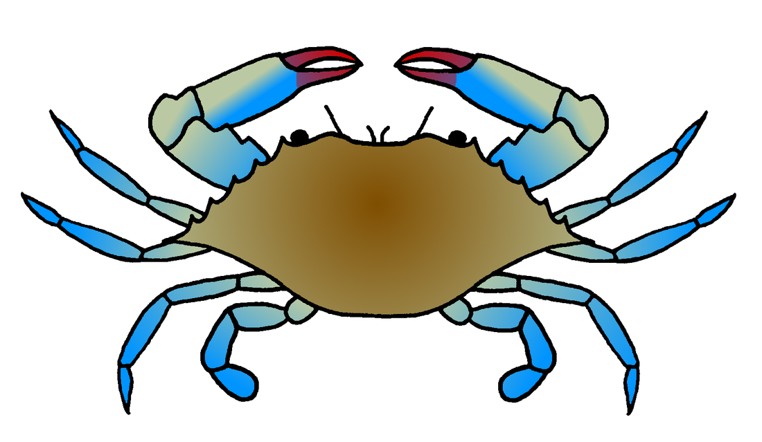 blue crab drawing at getdrawings com free for personal use blue rh getdrawings com maryland blue crab clipart maryland blue crab clipart