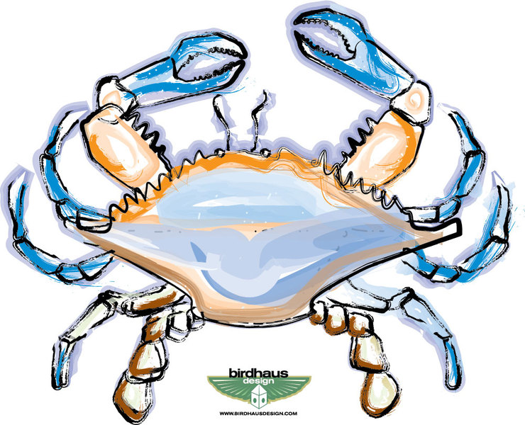 blue crab drawing at getdrawings com free for personal use blue rh getdrawings com maryland blue crab clipart blue claw crab clipart