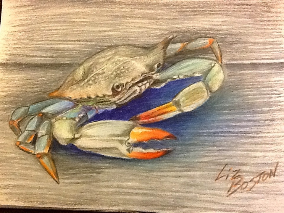 960x720 Crab Pencil Drawing