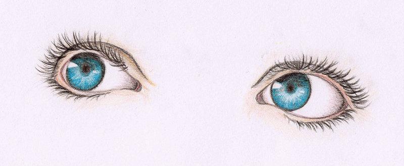 800x329 Blue Eyes Addict By Amayumi