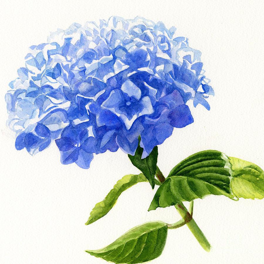 900x900 Blue Hydrangea Square Design Painting By Sharon Freeman