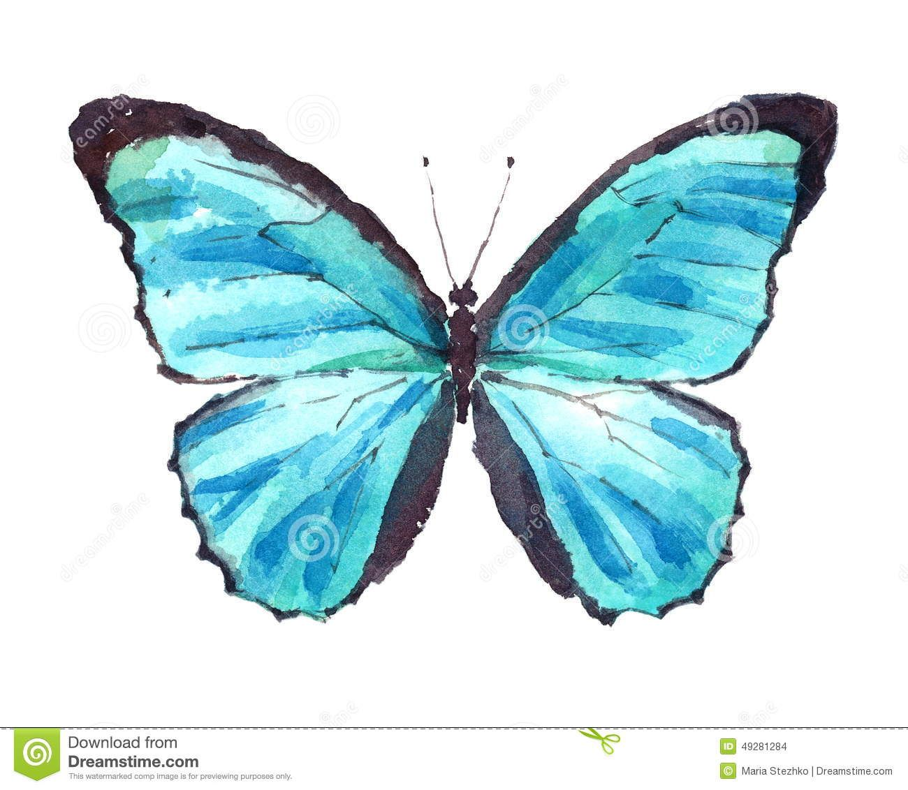 1300x1132 Blue Morpho Butterfly Watercolor Hand Drawn Illustration Insect