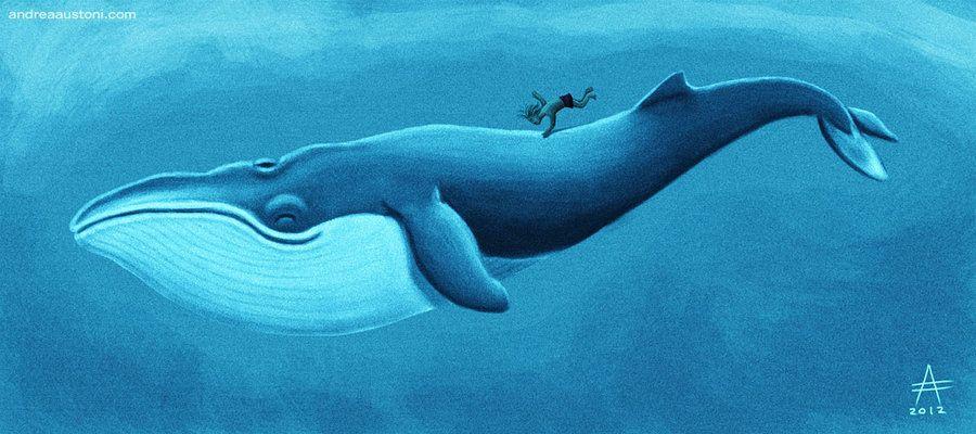 900x400 Blue Whale