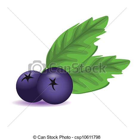 450x470 Blueberry With Leaves Eps Vectors