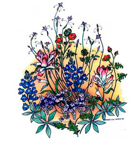 570x600 Texas Spring Wildflower Print Bluebonnet Floral Botanical